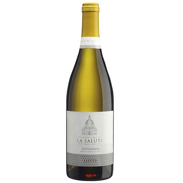 Rượu Vang Catina La Salute Sauvignon
