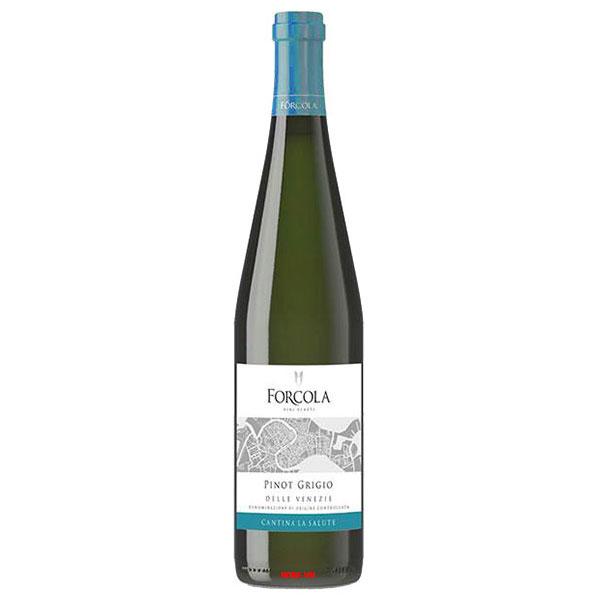 Rượu Vang Forcola Pinot Grigio - Wine VN : Wine & Spirits