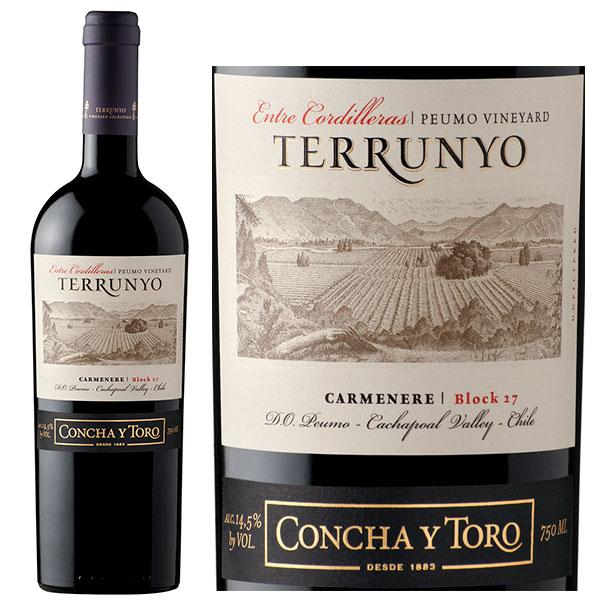 Rượu Vang Concha Y Toro Terrunyo Carmenere Block 27