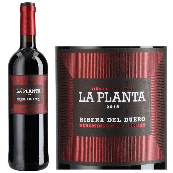 Rượu Vang Arzuaga La Planta Ribera Del Duero