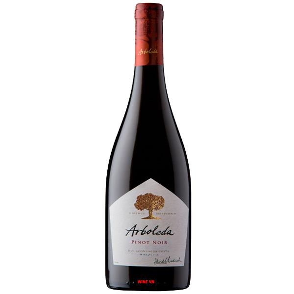Rượu Vang Chile Arboleda Pinot Noir