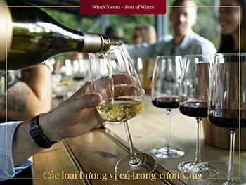 Các Loại Hương Vị Có Trong Rượu Vang