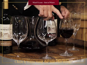 chọn ly rượu vang thế nào Thumbnail