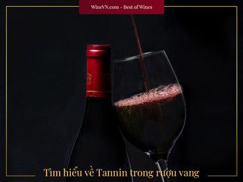 tannin trong rượu vang thumbnail