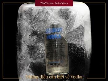 những điều cần biết về Vodka thumbnail