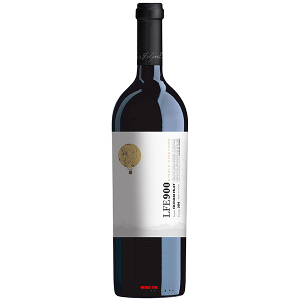 Rượu Vang Luis Felipe Edwards LFE900 Blend