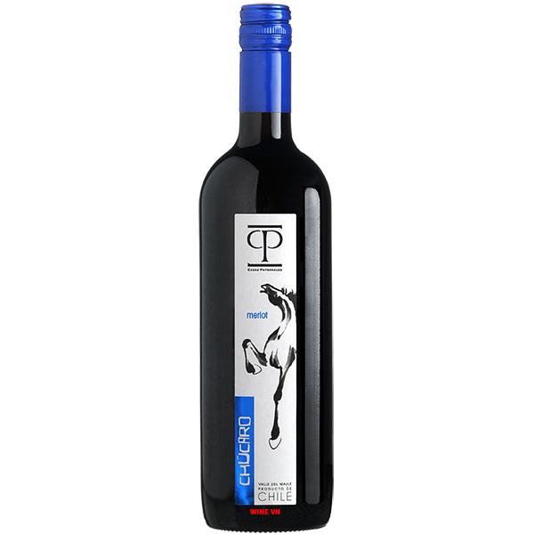Rượu Vang Casas Patronales Chucaro Merlot