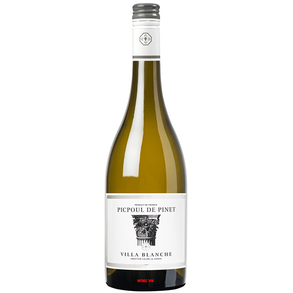 Rượu Vang Pháp Villa Blanche Picpoul De Pinet
