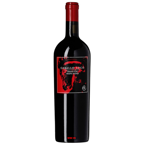 Rượu Vang Valdivieso Caballo Loco Grand Cru Maipo Andes