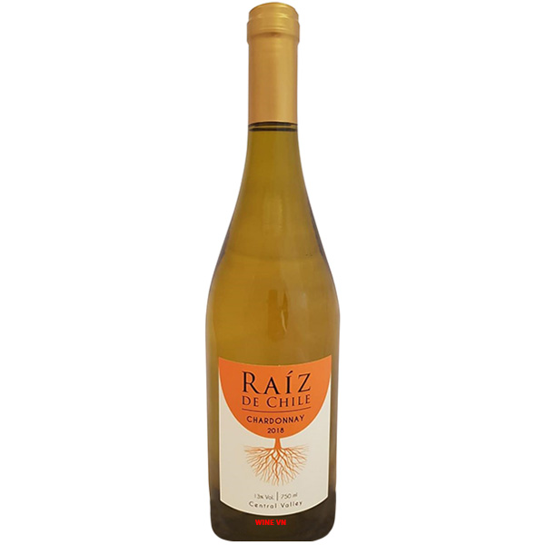 Rượu Vang Raiz De Chile Chardonnay