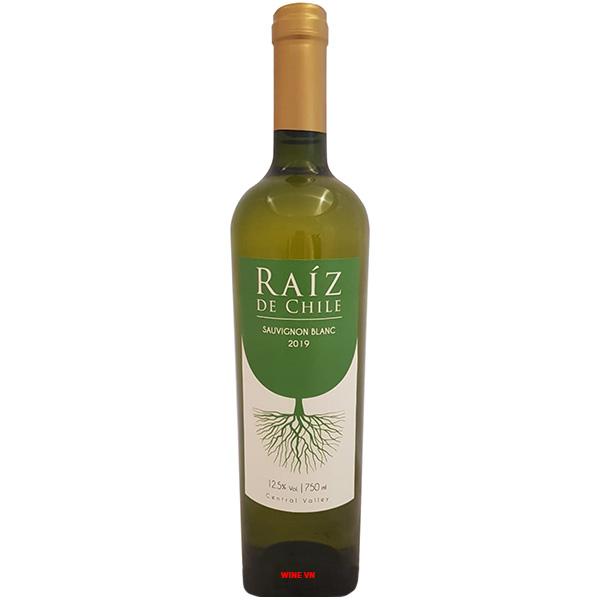 Rượu Vang Raiz De Chile Sauvignon Blanc