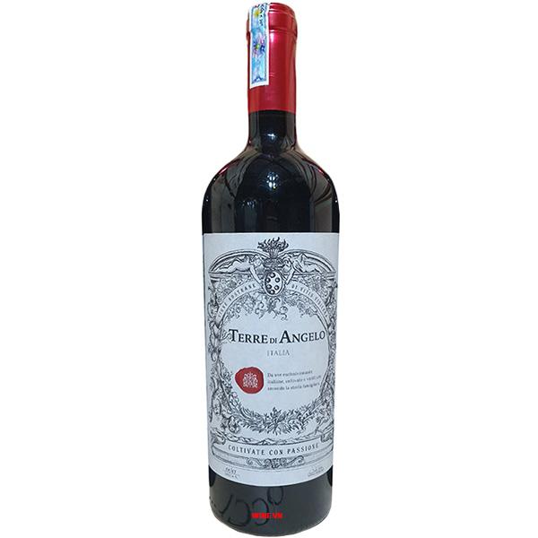 Rượu Vang Terre Di Angelo