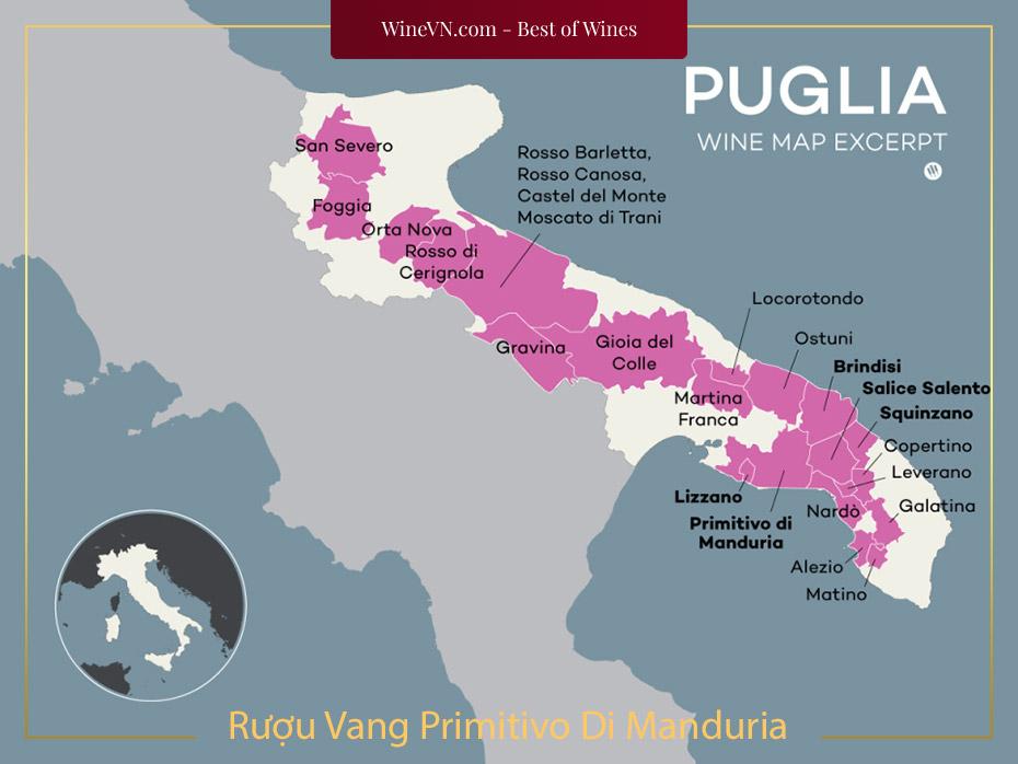 Tìm Hiểu Về Rượu Vang Primitivo Di Manduria